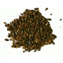 Jamaica - Yoga Tee