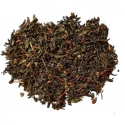 Darjeeling China Seed TGFOP